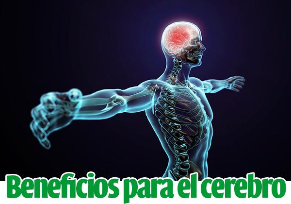 beneficios-deporte-cerebro