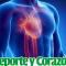 Deporte y Corazón: Deporte como mejora de la frecuencia cardiaca