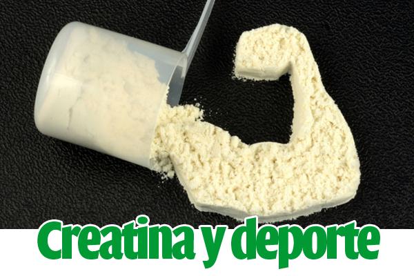 creatina-deporte